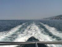 Puerto Vallarta boat tours