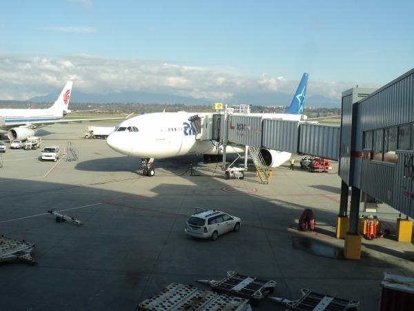 Flights To Puerto Vallarta